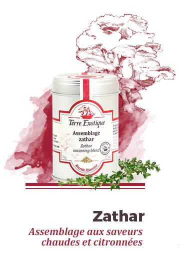 Assemblage Zathar - Terre Exotique